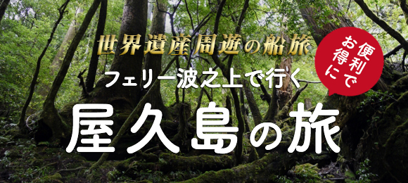 屋久島の旅